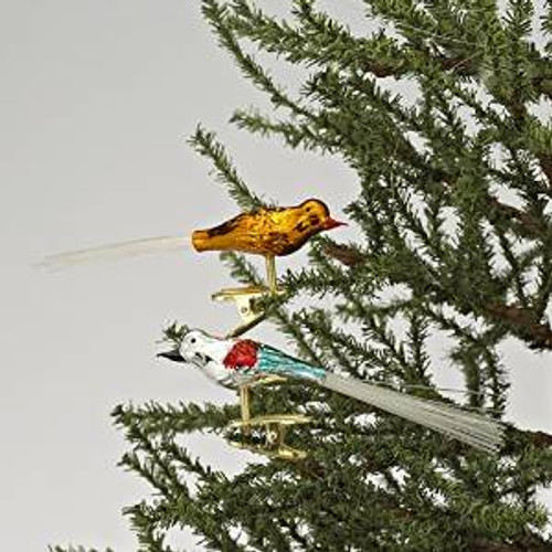 "Club Pack of 6 4.5""H Early Years Glass 5 Piece Clip-on Bird Christmas Ornaments - IMAGE 1"