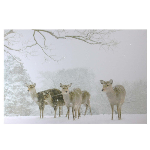 """Large Fiber Optic Lighted Winter Woods with Deer Canvas Wall Art 23.5"""" x 15.5"""" - IMAGE 1"""