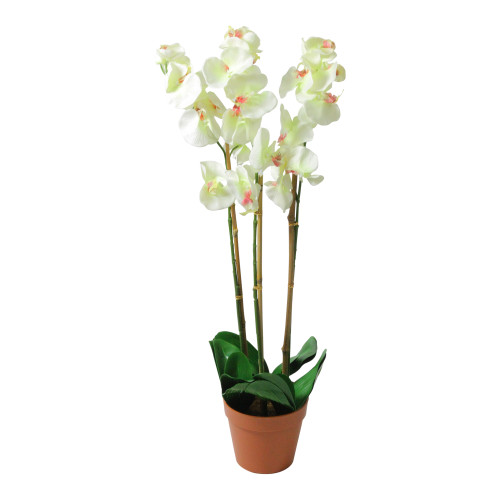 """30.5"""" White and Brown Potted Artificial Phalaenopsis Orchid Flower Plant - IMAGE 1"""