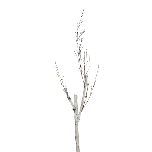 """46.5"""" White and Brown Birch Artificial Christmas Branch Twig - IMAGE 1"""