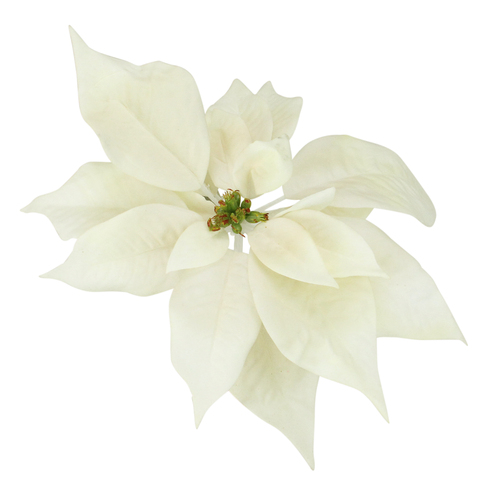 """9.5"""" Artificial Cream White Poinsettia Clip Christmas Ornament - IMAGE 1"""