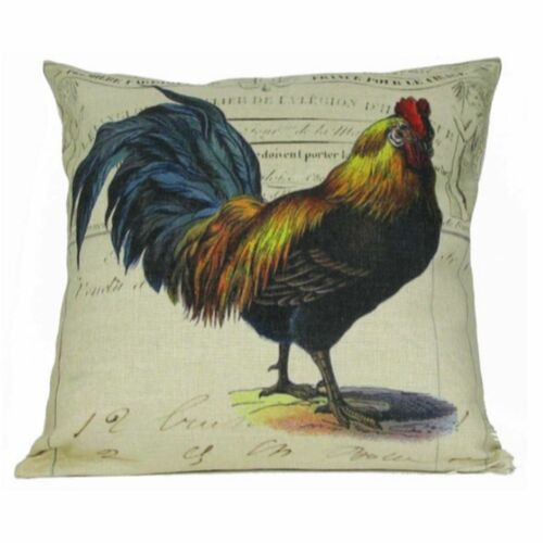 18 Brown Colorful Rooster Hen House Background Throw Pillow Cover Christmas Central
