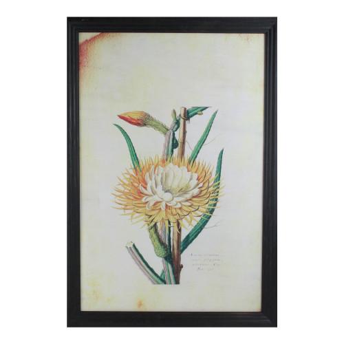 "26"" Yellow and Green Desert Baileya Flower with Black Photo Frame - IMAGE 1"