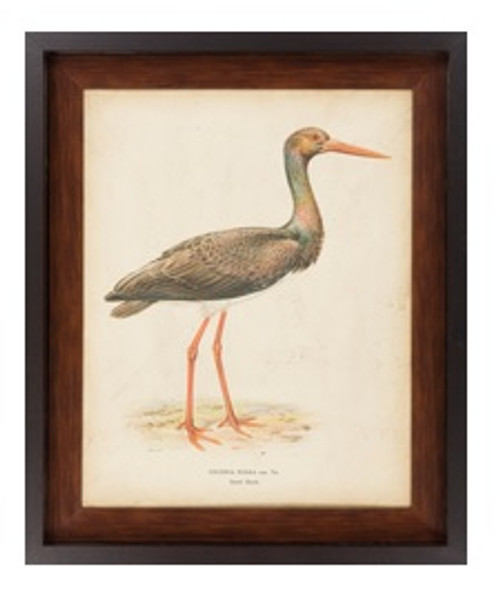 "33"" x 27"" Contemporary Vintage Heron Nature Painting Canvas Framed Wall Art - IMAGE 1"