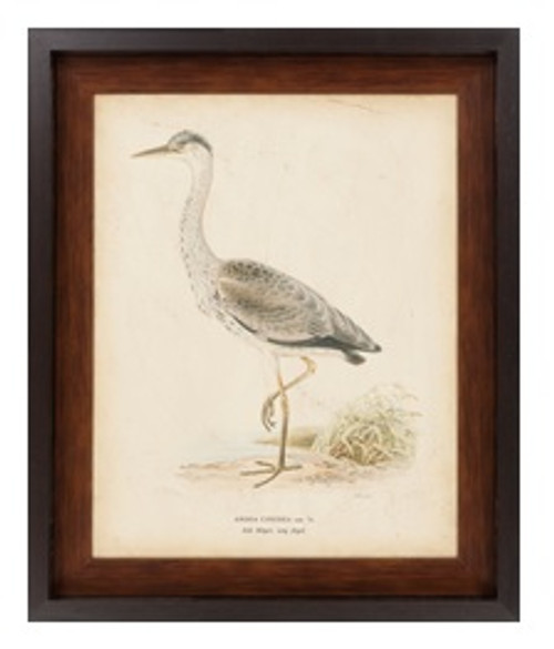 """33"""" x 27"""" Contemporary Vintage Heron Nature Painting Canvas Framed Wall Art - IMAGE 1"""