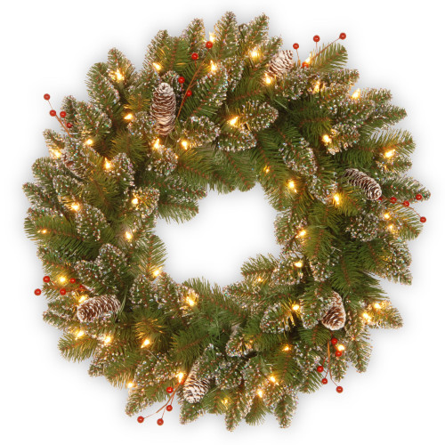 """24"""" Pre-Lit Glittery Mountain Spruce Artificial Christmas Wreath - Warm White LED Lights - IMAGE 1"""