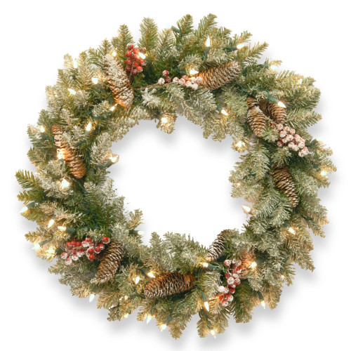 Pre-Lit Dunhill Fir Artificial Christmas Wreath with Red Berries – 24-Inch Clear Lights - IMAGE 1