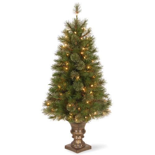 "4"" Pre-Lit Atlanta Spruce Artificial Christmas Entrance Tree - Clear Lights - IMAGE 1"