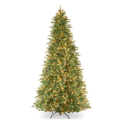 12' Pre-Lit Tiffany Fir Artificial Christmas Tree – Clear lights - IMAGE 1