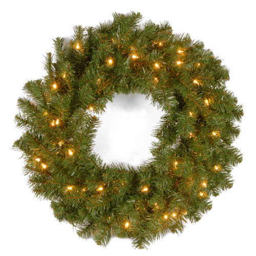 "24"" Pre-Lit Kincaid Spruce Artificial Christmas Wreath - Clear Lights - IMAGE 1"