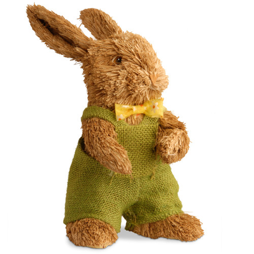 "11"" Dapper Brown Bunny - IMAGE 1"