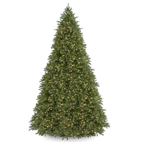12' Pre-Lit Jersey Fraser Artificial Christmas Tree - Clear Lights - IMAGE 1