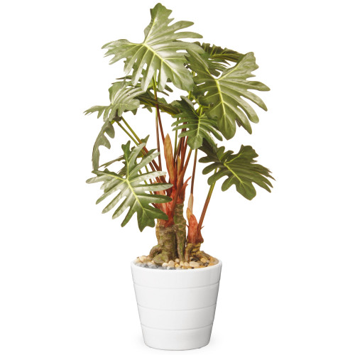 """21"""" Garden Accents Green Philodendron Plant in Ceramic Pot - IMAGE 1"""