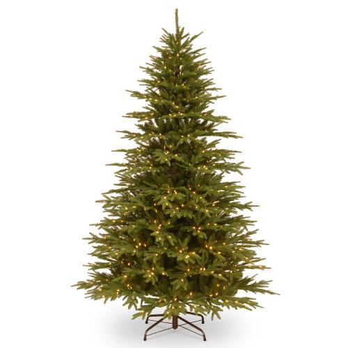 7.5' Pre-Lit Monterey Fir Artificial Christmas Tree – Clear Lights - IMAGE 1