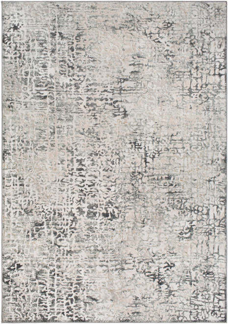 6.5' x 9.5' Distressed Finish Beige and Gray Rectangular Area Throw Rug - IMAGE 1