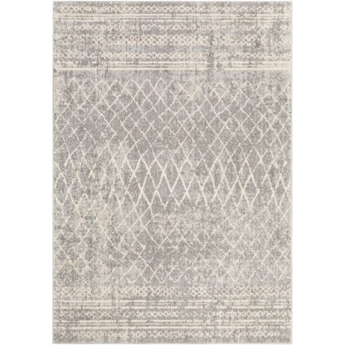 2' x 3' White and Gray Distressed Rectangular Area Throw Rug - IMAGE 1