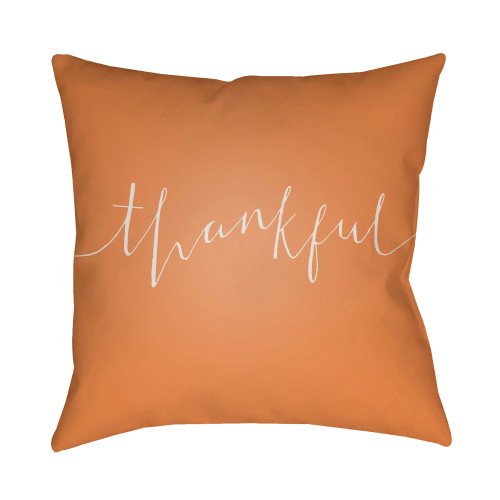 """20"""" Orange and Beige """"thankful"""" Printed Throw Pillow Cover with Knife Edge - IMAGE 1"""