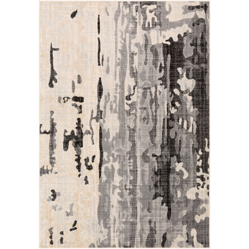 2' x 3' Beige and Black Abstract Pattern Rectangular Area Throw Rug - IMAGE 1