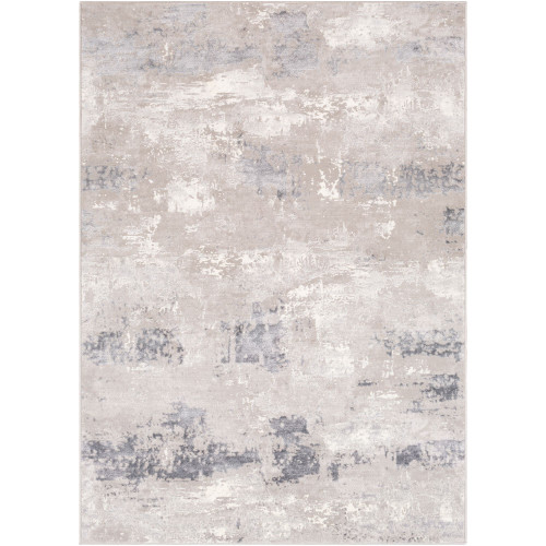 2' x 3' Distressed Style Finish Gray and Ivory Rectangular Machine Woven Area Throw Rug - IMAGE 1