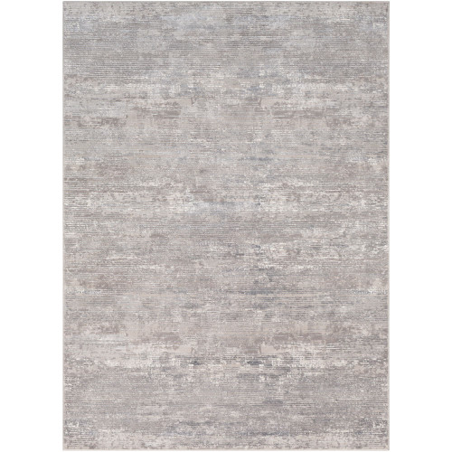 2' x 3' Distressed Style Gray and Ivory Rectangular Machine Woven Area Throw Rug - IMAGE 1