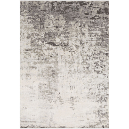 2' x 3' Distressed Gray and Ivory Rectangular Machine Woven Polypropylene Area Throw Rug - IMAGE 1
