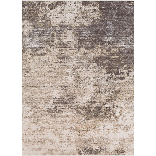 9' x 13' Distressed Finish Brown and Beige Rectangular Area Throw Rug - IMAGE 1