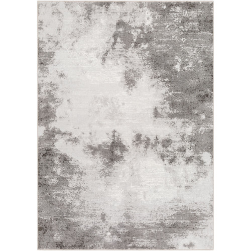 9.1' x 12.8' Distressed Finish Gray and White Rectangular Area Throw Rug - IMAGE 1