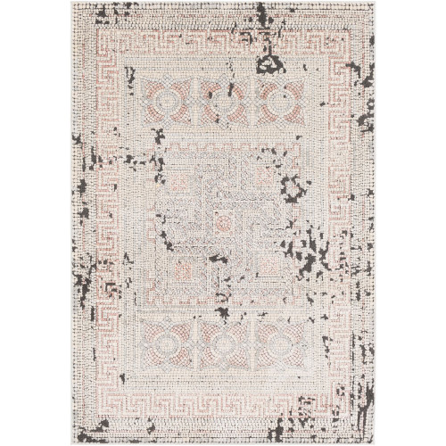 8.9' x 12.3' Distressed Finish Gray and Beige Rectangular Area Throw Rug - IMAGE 1