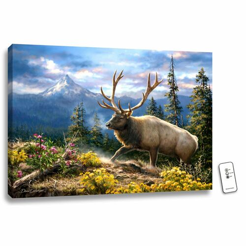 """18"""" x 24"""" Brown and Green Siskiyou Bluff Backlit LED Wall Art with Remote Control - IMAGE 1"""