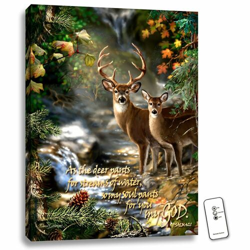 """Green and Brown Deer Creek Bible Verse LED Backlit Rectangular Wall Art with Remote Control 24"""" x 18"""" - IMAGE 1"""