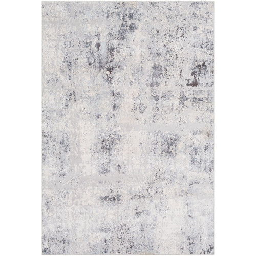 2' x 3' Distressed Finished Silver Gray and White Rectangular Area Throw Rug - IMAGE 1