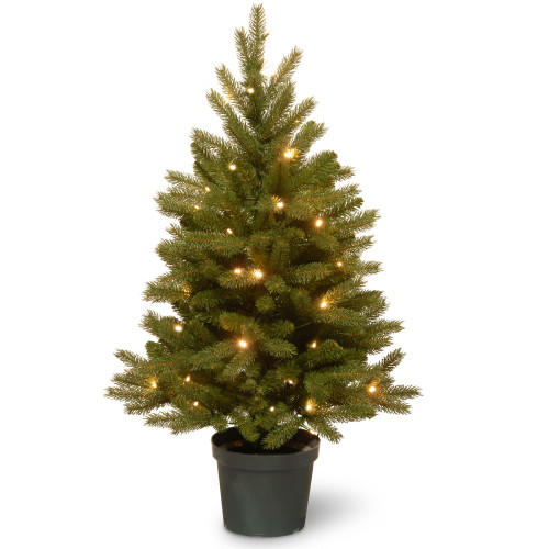 3' Pre-lit Potted Jersey Fraser Fir Artificial Christmas Tree – Warm White LED Lights/BO - IMAGE 1