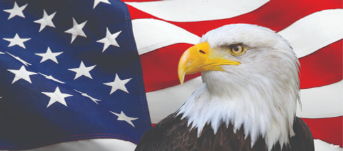 7' X 16' Red and Blue Eagle Printed Us Flag Double Car Garage Door Banner - IMAGE 1