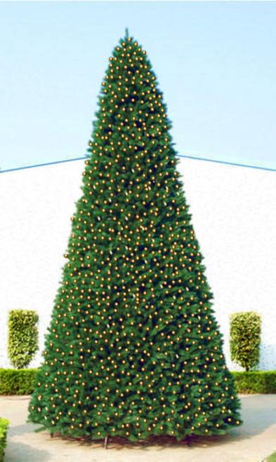 12' Pre-Lit Green Slim Pine Artificial Christmas Tree - Clear Lights - IMAGE 1