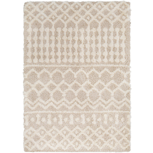 2' x 3' Beige and White Moroccan Patterned Rectangular Machine Woven Area Rug - IMAGE 1