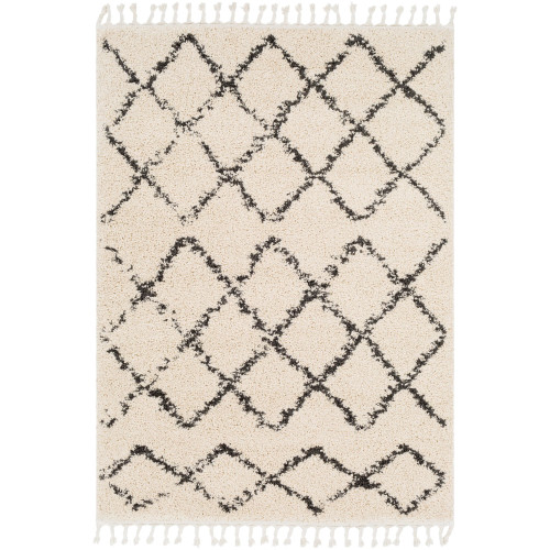 2' x 3' Gray and Beige Moroccan Patterned Rectangular Machine Woven Area Rug - IMAGE 1