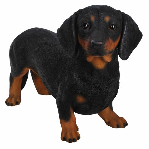 """19.5"""" Black and Brown Modern Standing Dachshund Statue - IMAGE 1"""