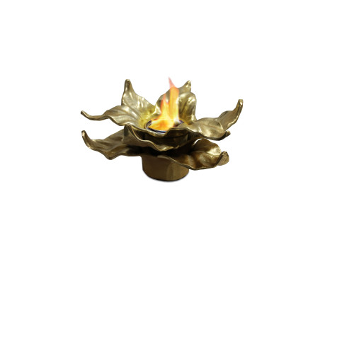 Anywhere Fireplace Indoor/Outdoor Fireplace - Heathcote (Gold) - IMAGE 1