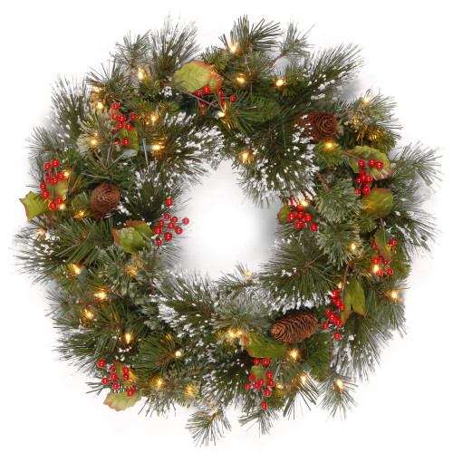 """24"""" Pre-Lit Wintry Pine Artificial Christmas Wreath - LED Lights and BO - IMAGE 1"""