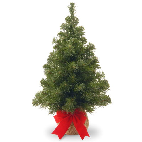 2' Potted Noble Spruce Medium Artificial Christmas Tree - Unlit - IMAGE 1