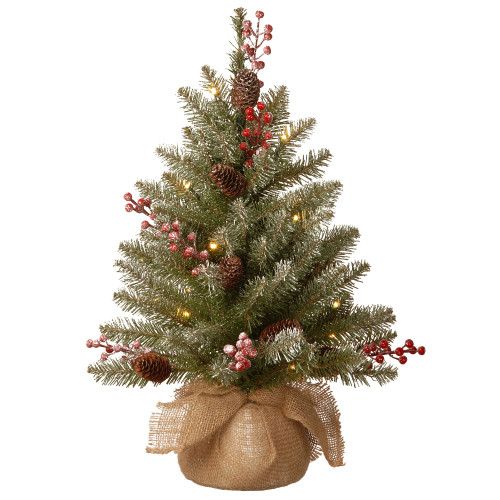 2' Pre-Lit Dunhill Fir Artificial Christmas Tree - Warm White LED Lights - IMAGE 1