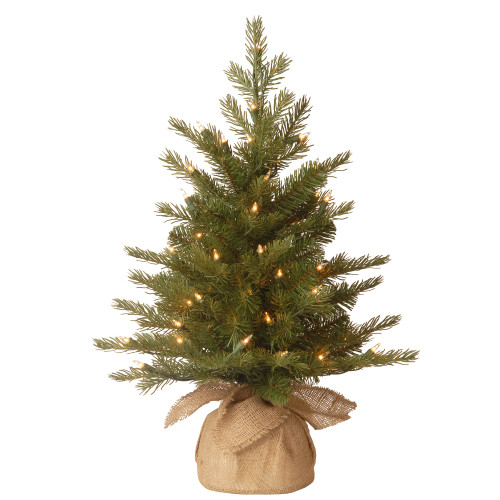 2' Pre-Lit Potted Nordic Spruce Full Artificial Christmas Tree – Clear Lights - IMAGE 1