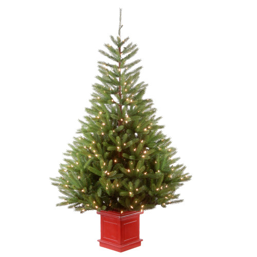 5' Pre-Lit Potted Topeka Spruce Entrance Medium Artificial Christmas Tree – Clear Lights - IMAGE 1