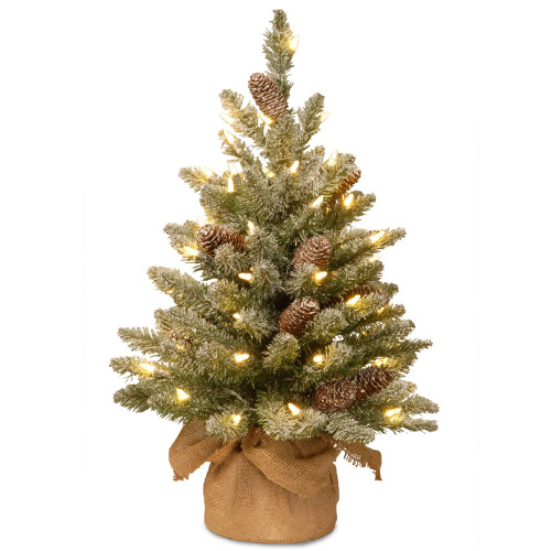 2' Pre-lit Potted Battery Operated Snowy Concolor Fir Artificial Christmas Tree - Warm White LED Lights - IMAGE 1