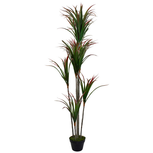 """67"""" Green and Red Artificial Dracaena Marginata Potted Plant - IMAGE 1"""