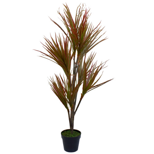 """55"""" Green and Red Artificial Dracaena Potted Plant - IMAGE 1"""