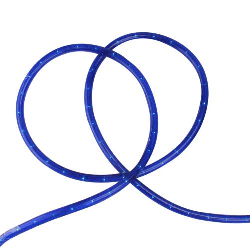 100' Blue Christmas Rope Lights - IMAGE 1