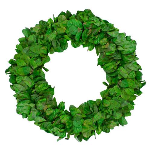 "20"" Lush Green Preserved Leaf Spring Garden Wreath - Unlit - IMAGE 1"