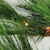 7' Pre-Lit Medium Pine Artificial Christmas Tree - Warm Clear LED Lights - IMAGE 2