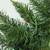 "9' x 12"" Pre-Lit Buffalo Fir Artificial Christmas Garland - Multi LED Lights - IMAGE 2"
